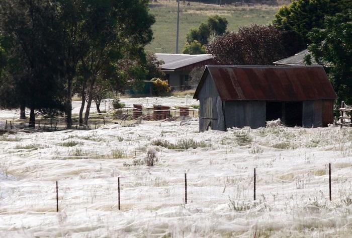 Австралия 2012