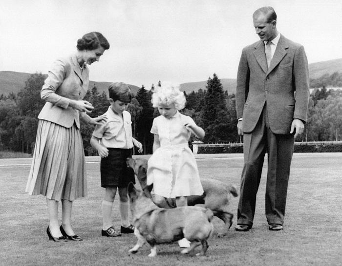 Королевская семья с корги «Сахарок» и «Конфетка», 1955 год