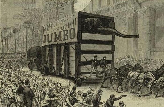 Испытание на прочность - шествие слонов и верблюдов по мосту
