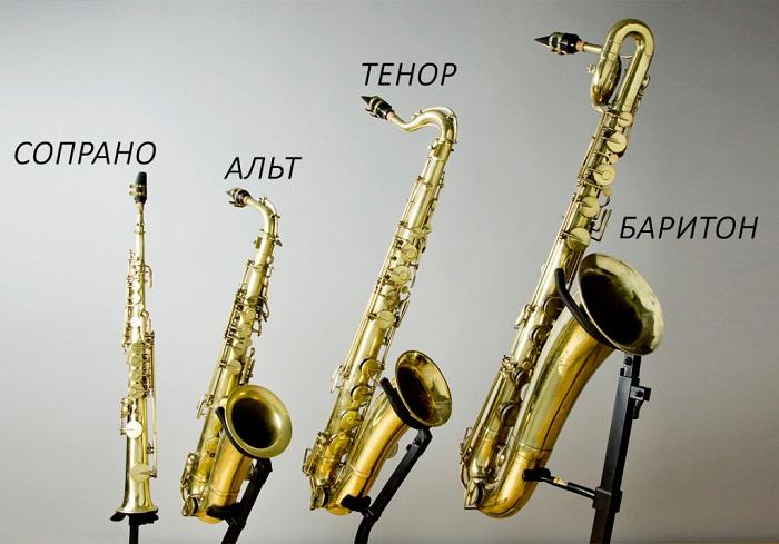 Самые популярные виды саксофонов