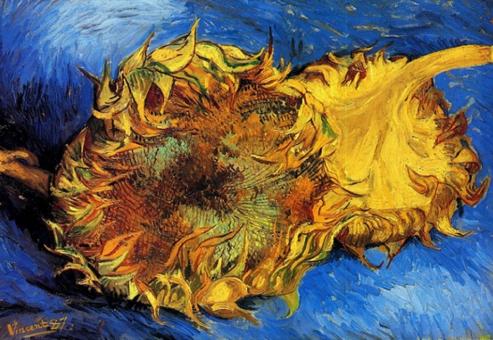 Два срезанных подсолнуха.  Париж, сентябрь 1887. Холст, масло, 42х6 Музей Метрополитен, Нью-Йорк, США.