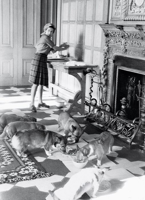Елизавета и собаки, летний отпуск в Балморал,1976 год