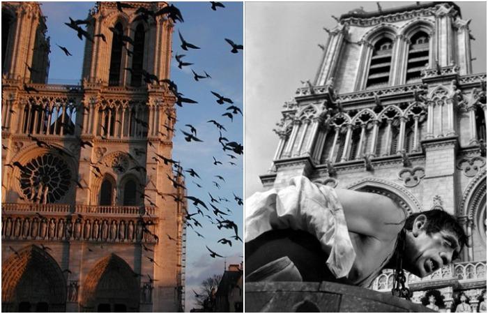 Нотр-Дам де Пари: Тайны и легенды собора, его бесценные реликвии и необычные обитатели…