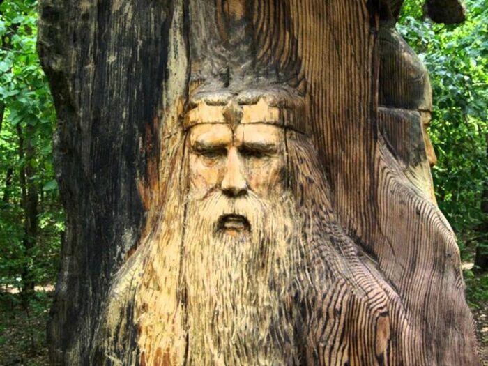 Дуб считался на Руси священным деревом. /Фото: i.pinimg.com