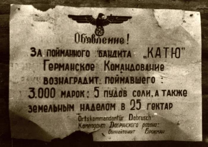 Варя серьезно усложняла жизнь фашистам. /Фото: avatars.mds.yandex.net
