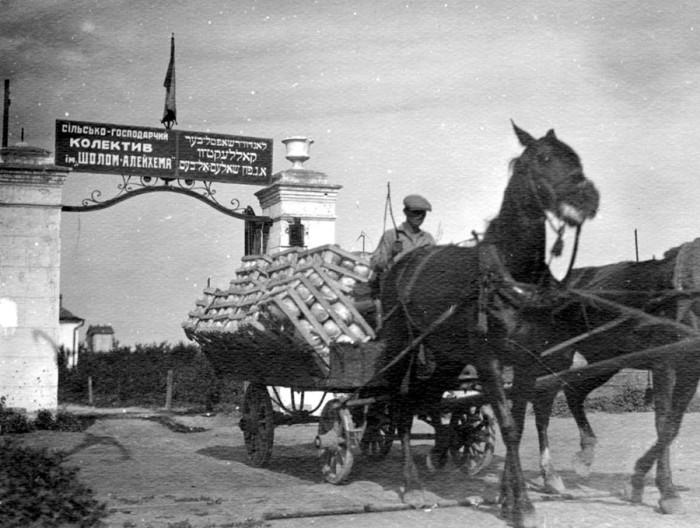 Помощь еврейским переселенцам-агрария оказывала американская организация «Джойнт». /Фото: cont.ws
