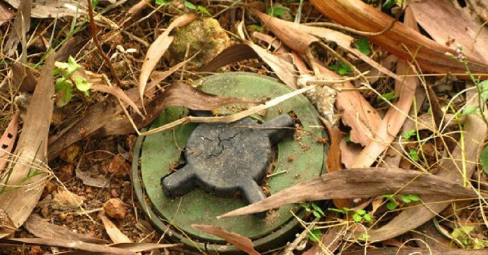 Советское командование делало серьезные ставки на заградительные минные поля. /Фото: avatars.mds.yandex.net