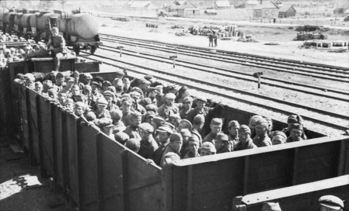 Перевозка советских военнопленных немцами 1941 год. /Фото: s013.radikal.ru