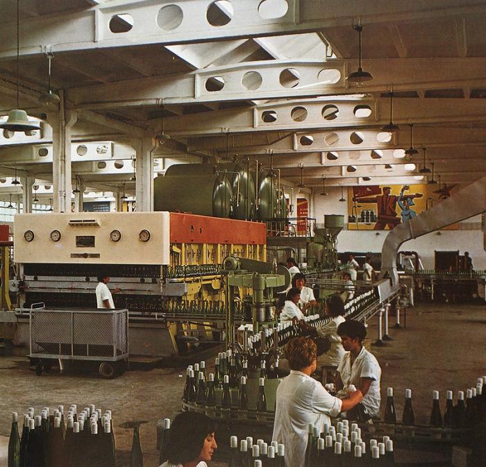 Болгария была не только здравницей, но и житницей, и кузницей. В социалистической кооперации она, конечно, была больше известна своей сельхозпродукцией. Винпром в Софии, 1960-е./Фото: bigpicture.ru