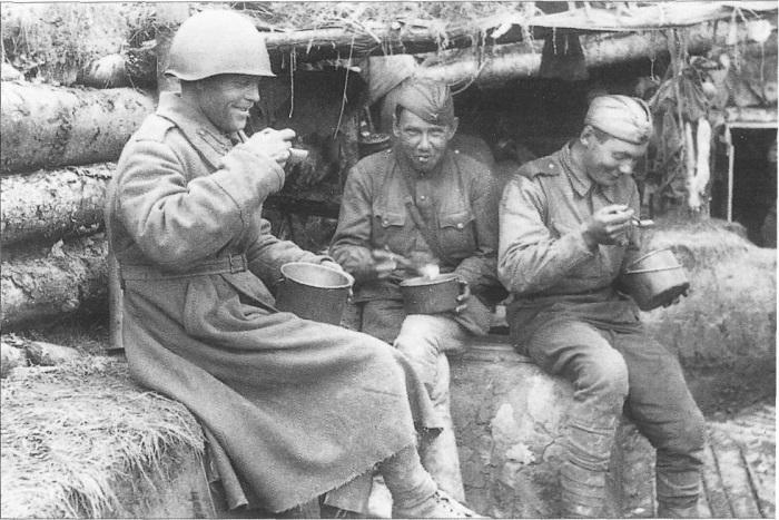 За питанием солдат строго следили. /Фото: avatars.mds.yandex.net