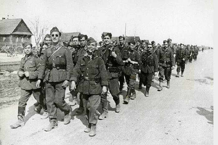 «Голубая дивизия» в СССР. /Фото: ic.pics.livejournal.com