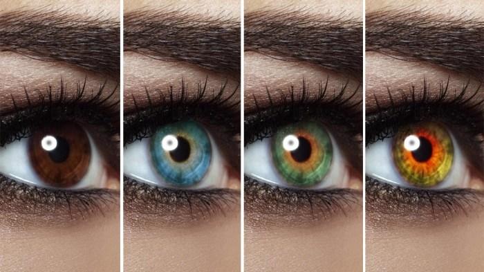 Только кареглазые жители Башкирии имели льготу при уплате налога на цвет глаз./Фото: bestdiets.site