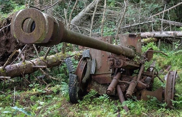 Отзвуки войны – находки на острове Гогланд./Фото: avatars.mds.yandex.net