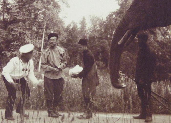 Фото Романовых со слоном./Фото: ic.pics.livejournal.com