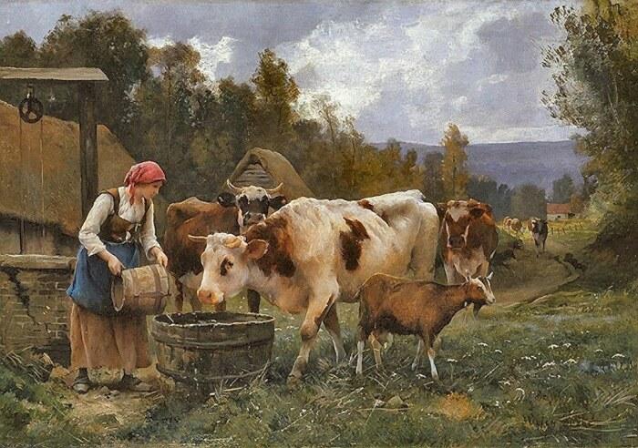 Если корова заболевала, ее целовали в лоб. /Фото: live.staticflickr.com