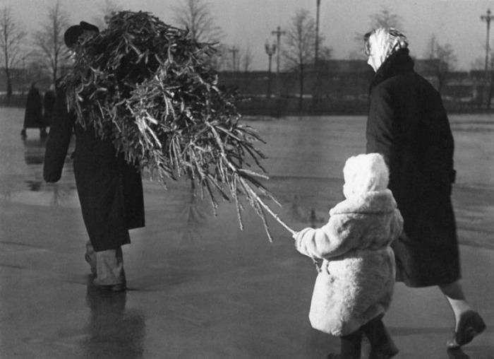 Cоветская семья купила елку./Фото: chert-poberi.ru