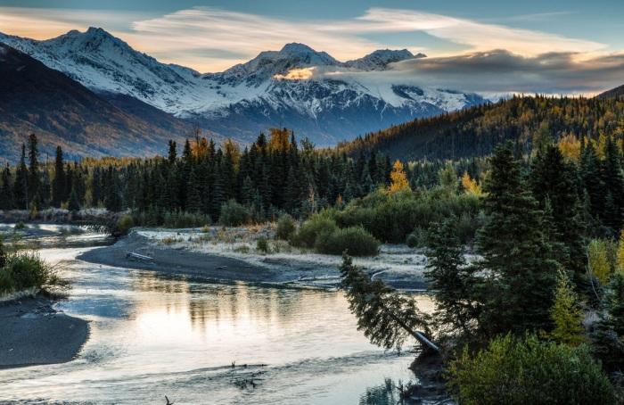 Первопоселенцев привлекали богатые леса Аляски./Фото: vokrugsveta.ua