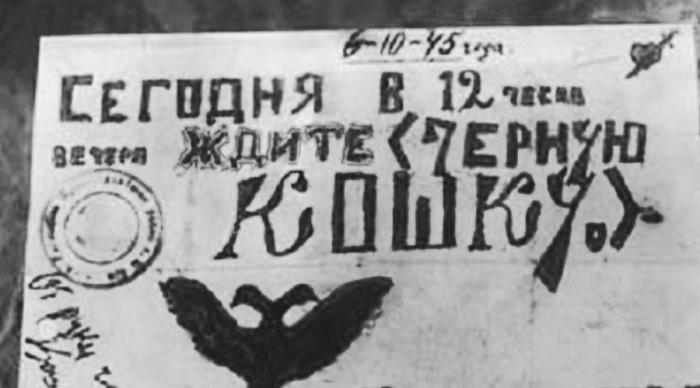 Бандиты оставляли на дверях квартир перед ограблением своеобразную метку в виде рисунка чёрной кошки./Фото: 24warez.ru