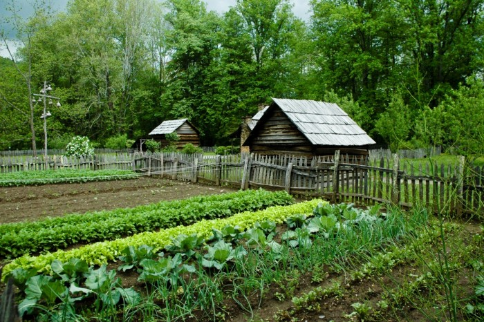 Для многих россиян огород на даче был способом прокормить семью./Фото: www.medved-centr.ru