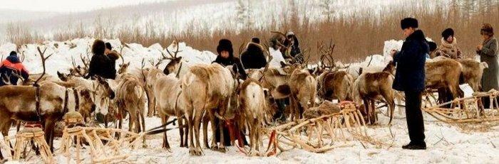 Поселок Иенгра, жители которого и сегодня живут древними эвенкийскими традициями оленеводчества./Фото: rulandinfo.ru