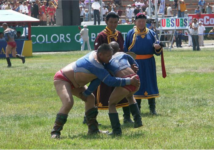 Быть борцом в Монголии очень почётно./Фото: assets.hipmunk.com