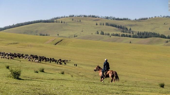 Монгольский пастух./Фото: fototelegraf.ru