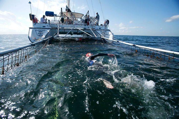 Дженифер Фигге плывет вслед за яхтой в сетке от акул./Фото: ic.pics.livejournal.com