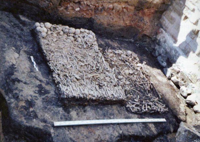 Скудельница, археологические раскопки./Фото: www.booksite.ru