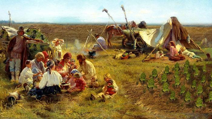 До появления картофеля редька была царицей русского стола./Фото: cdn.tvc.ru