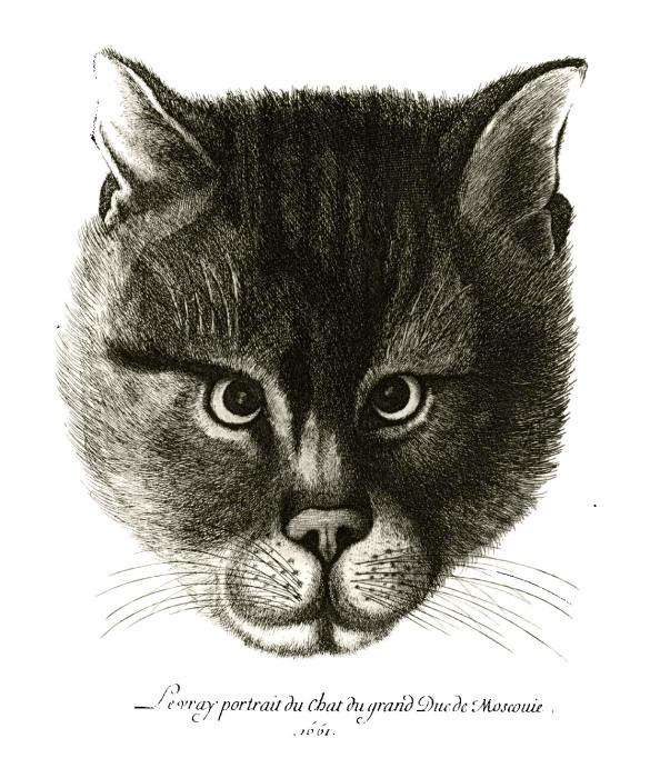 Подлинное изображение кота Великого князя Московского Алексея Михайловича./Фото: runivers.ru