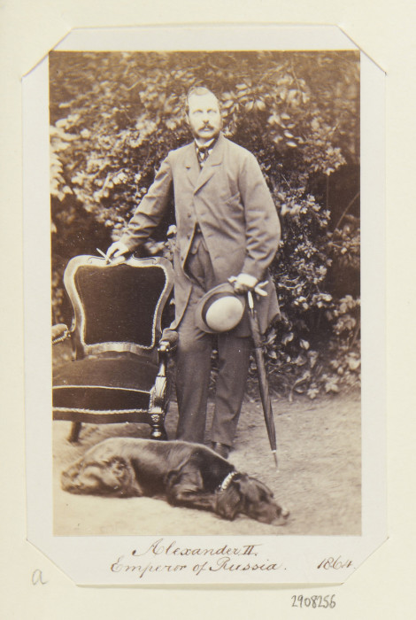 Собака Александра II./Фото: img-fotki.yandex.ru