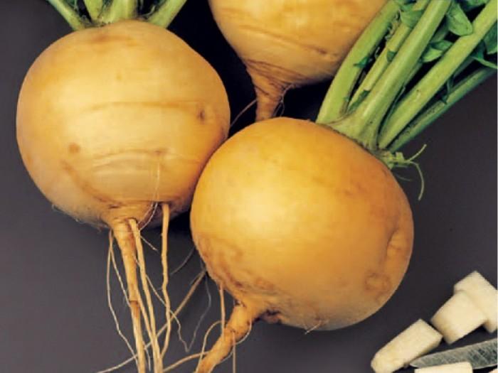 Главный овощ до появления картофеля./Фото: ruvera.ru