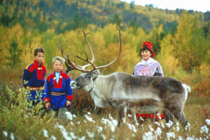Саамы с оленем./Фото: abfund.org