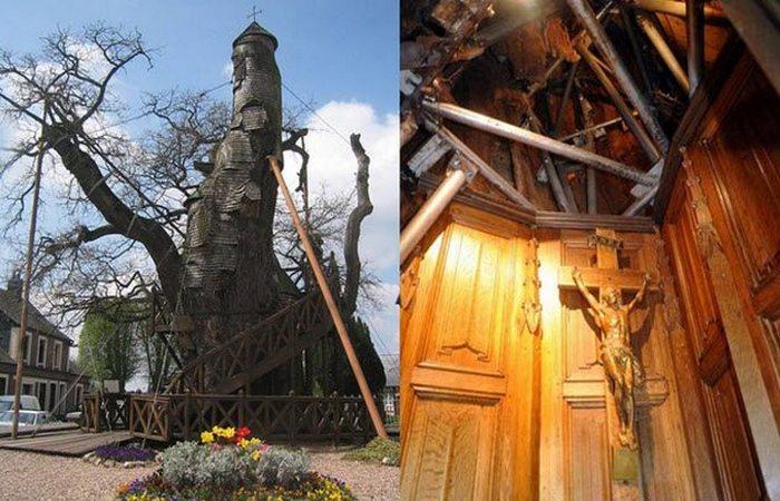 Необычная «Chene-chapelle».