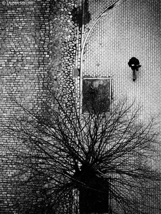 Рига © фотограф Залман Шкляр