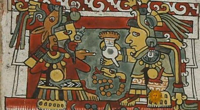 Ацтеки пили много какао.