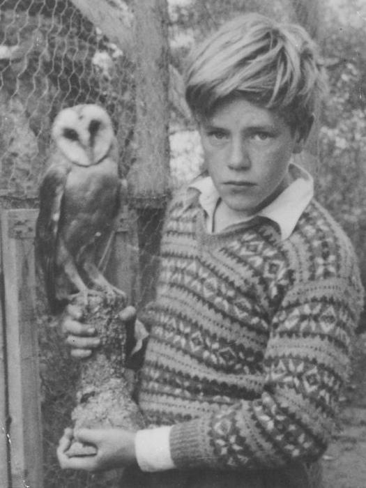 Джеральд Даррелл животными интересовался куда больше, чем школой.