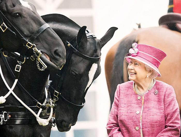 Английская королева замечательно разбирается в лошадях.