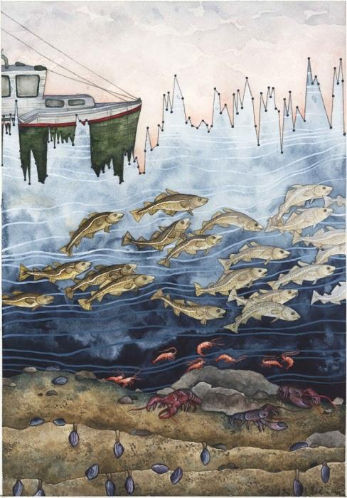 Под каждым участком графика изменения температуры в заливе Мэйн видно, как меняется количество и вид подводных обитателей.
