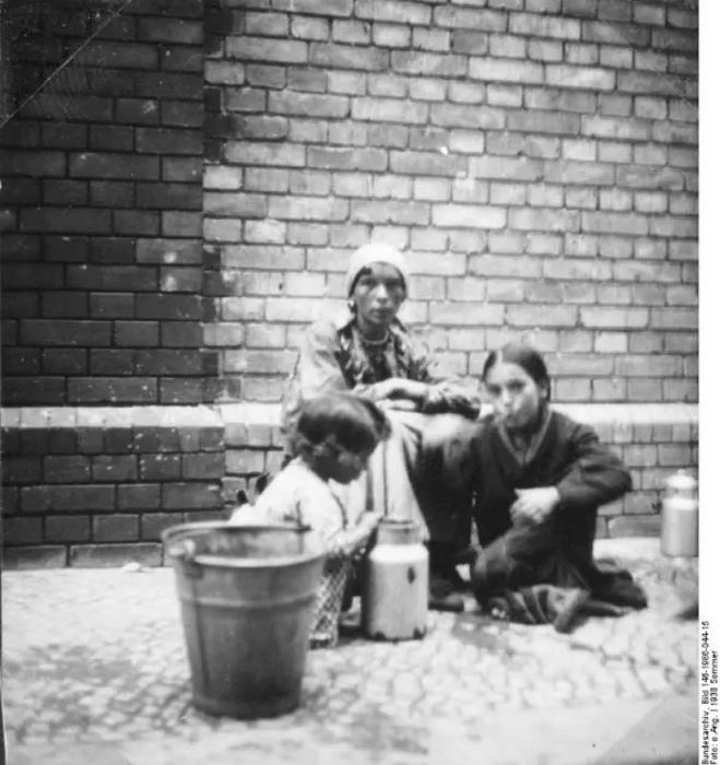 По мнению нацистов, существовали природно ленивые или природно необучаемые народы.