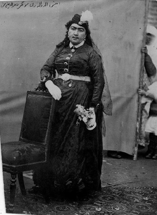 Анис была не главной, но самой любимой женой шаха, он считал её умной и красивой, и его гости тоже хорошо отзывались об Анис.