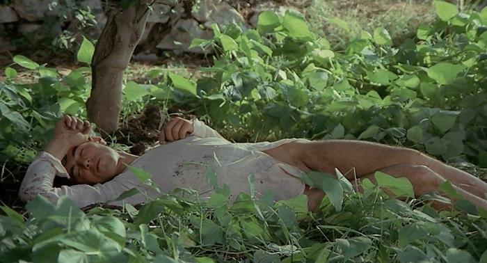 Тот самый молодой крестьянин в фильме Пазолини.