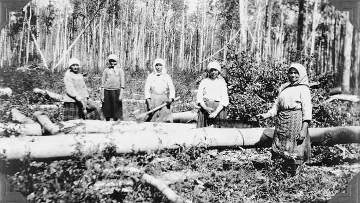 Женщины на лесоповале.