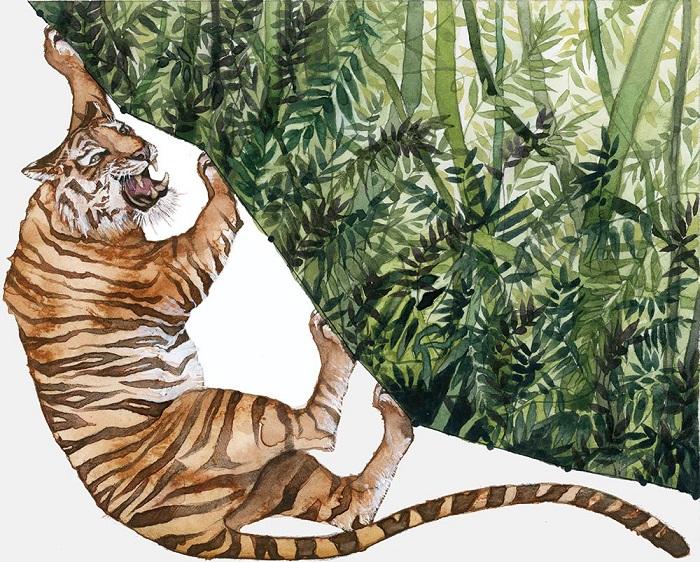 Тигр на этой картинке кажется вцепившимся в поросший лесом обрыв из последних сил и всё равно почти упавшим в пропасть. График показывает уменьшение количества джунглей с 1970 года и тот факт, что процесс ведёт к вымиранию вида.