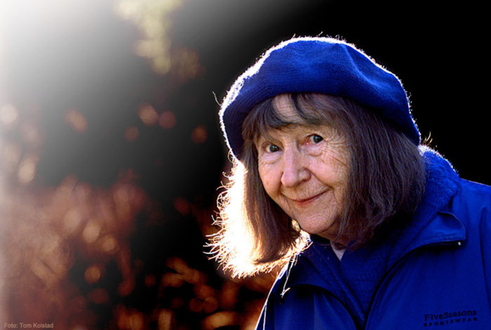Восемь детей, грузовик, гитлеровская оккупация и вся остальная жизнь Анне-Катарины Вестли.