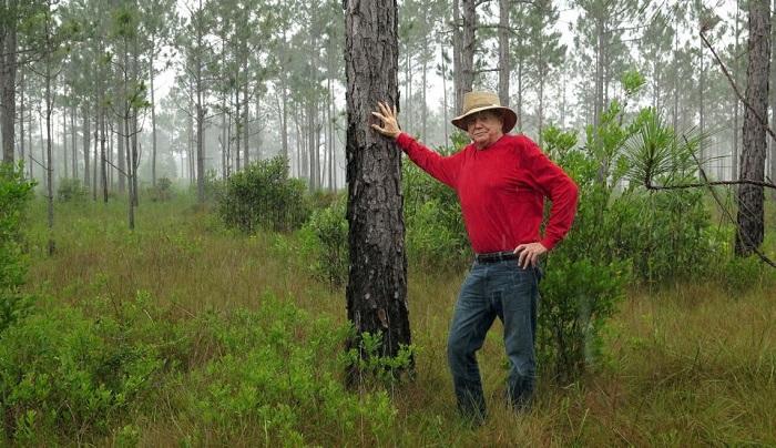 Мэрион создал свой частный заповедник, где восстановил леса.