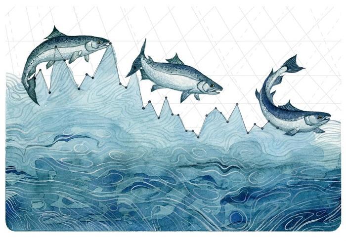 Чем меньше ледников, питающих реки, тем меньше воды в реках, и рыбе становится негде жить, а значит, и самой рыбы становится меньше. А ведь ею питаются не только люди.
