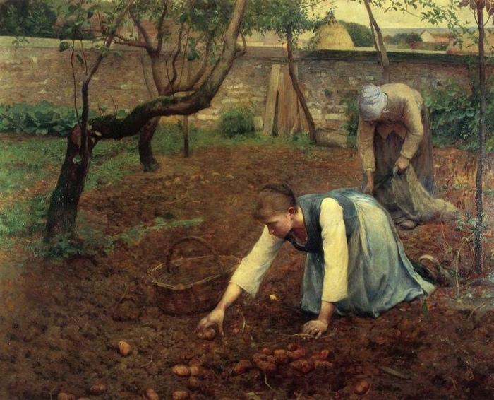 Из-за рациона, почти полностью состоящего из картошки, долгое время обычными болезнями ирландцев были рахит и анемия. Картина Ги Роуз.