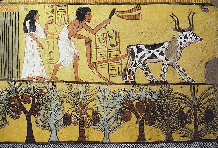 В Древнем Египте полагали, что муж и жена должны по жизни смотреть в одну сторону. А если смотрят в разные - значит, нужны другие муж и жена.