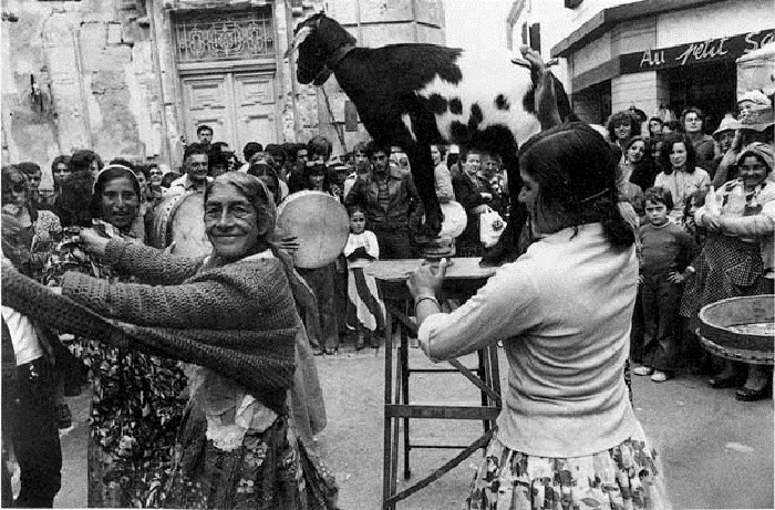 Выступление с козочкой на празднике в честь Сары Ла Кали. Фотография кочевого цыгана-проповедника Матео Максимова.